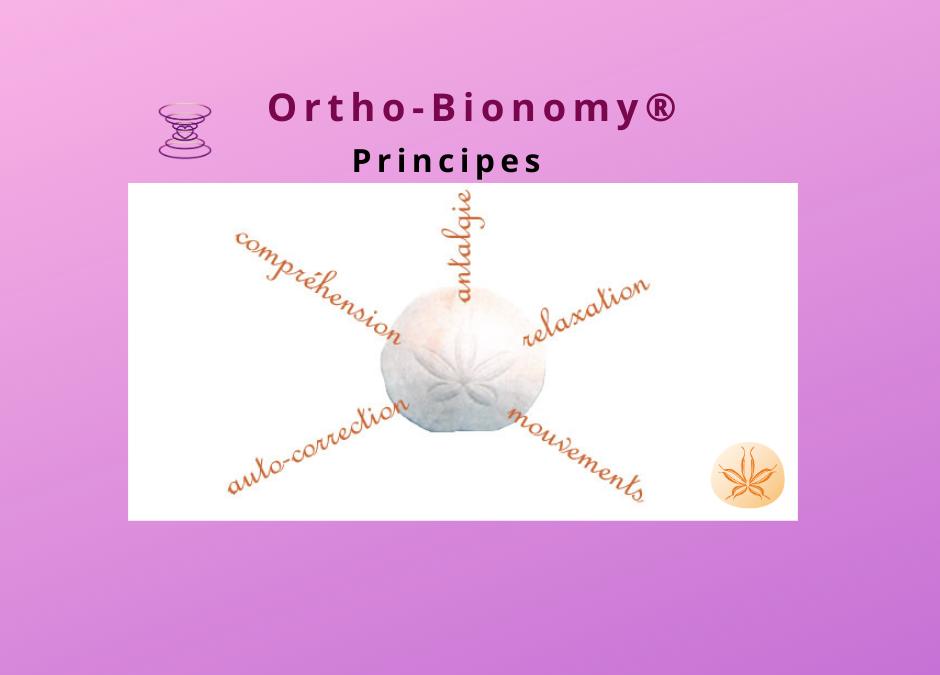 Comment ça fonctionne l'Ortho-Bionomy®?                                            Différents aspects  (3/7)